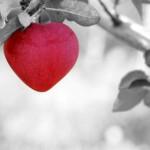 Das Wunder der wahren Liebe
